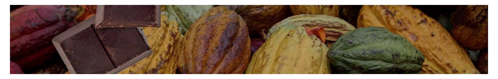 Cioccolato di Modica e Cioccolatini di Modica igp - Vendita Online